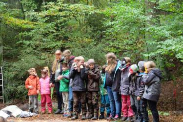 Waldtheater im Naturum Göhrde